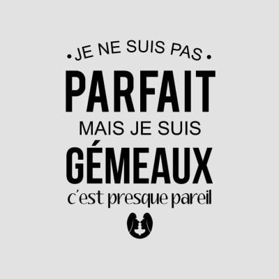 tee shirts gémeaux