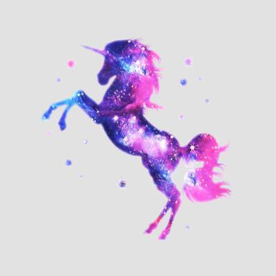 magliette unicorno