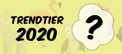 Preview Trendtier2020 Contest