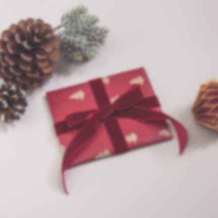 Gift Certificates in Christmas wrapping