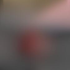 Exempelmotiv från aktuell designer månadens mönster