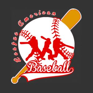 baseball league american hoodies sweatshirts