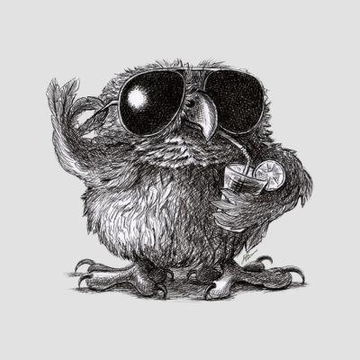 Pöllö T-paidat