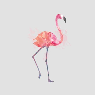 Flamingo T-Shirts