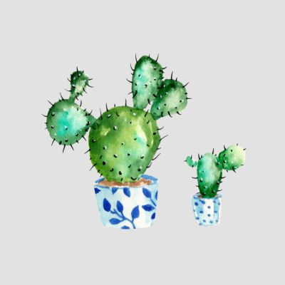 Kaktus T-Shirts