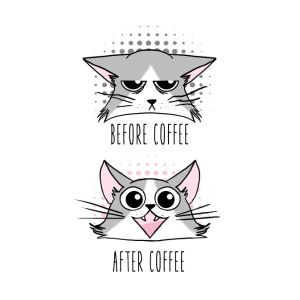 grumpy and happy cats before and after coffee bouteilles et tasses