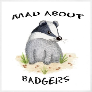 Kids Mad about Badgers T Shirt - Teenage T-shirt