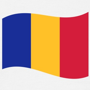 romania T-shirts - Herre-T-shirt