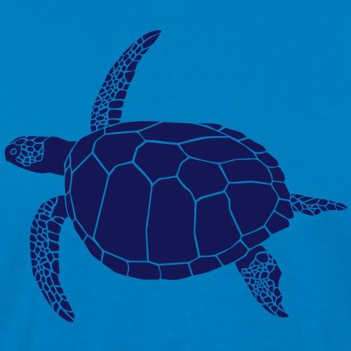 meeres schildkröte