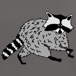 Waschbär raccoon waschen bär sauber racoon wald