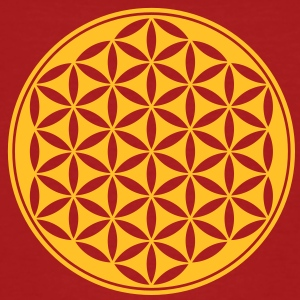 Vector - Flower of Life - 03, 1c, sacred geometry, energy, symbol, powerful, healing, protection,  T-shirts - Organic mænd