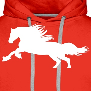 Horse  Sweat-shirts - Sweat-shirt à capuche Premium pour hommes