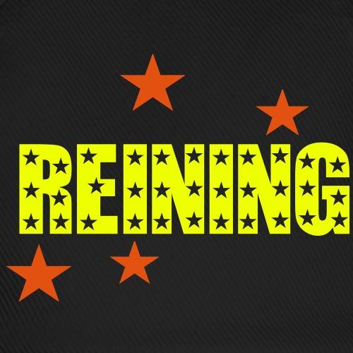 reining_stars_zweifarbig