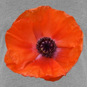 Red poppy T-Shirts - Women's Premium T-Shirt