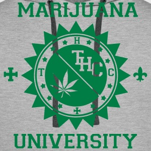 Marijuana university - Sweat-shirt à capuche Premium pour hommes