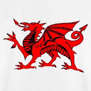 Wales world football soccer t-shirts - Kids' T-Shirt
