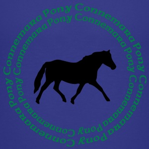 Connemara Pony -this design lets you change the colours Shirts - Teenager Premium T-shirt