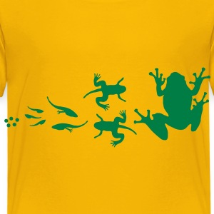 frog_evolution T-shirt bambini - Kinderen Premium T-shirt