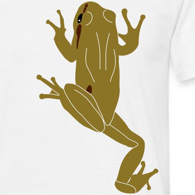 Climbing Tree Frog