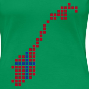 Kelly green Norway Flag Pixel Map Ladies' - Women's Premium T-Shirt