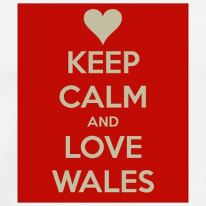 Keep Calm And Love Wales T-Shirt - Men's Premium T-Shirt