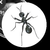 Motif ~ La fourmi