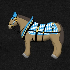bavarian cold-blooded horse  Hoodies & Sweatshirts - Women's Boat Neck Long Sleeve Top