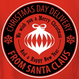 Christmas Day Delivery From Santa Claus Pullover & Hoodies - Frauen Premium Hoodie
