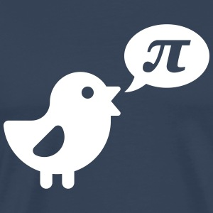 Bird: Pi T-Shirts - Men's Premium T-Shirt