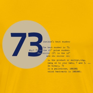 73 the best number BIG BANG Physiker Lehrer - Männer Premium T-Shirt