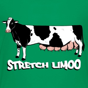 Stretch Limoo T-Shirts - Teenager Premium T-Shirt