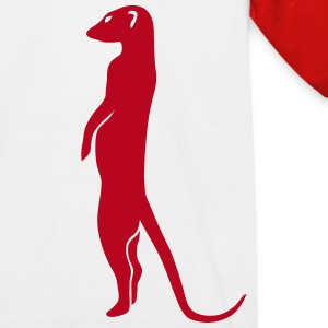 erdmännchen meerkat