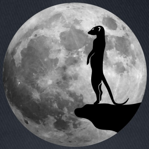erdmännchen mond meerkat moon
