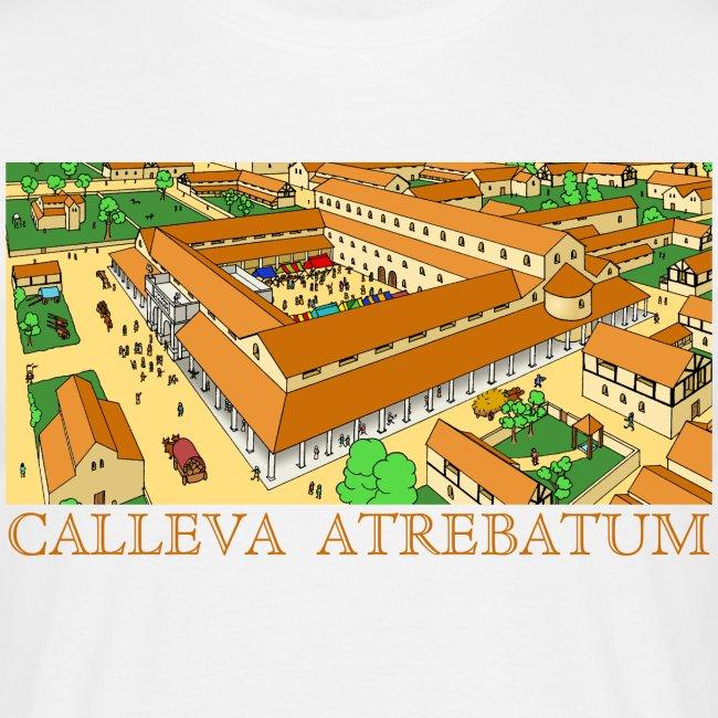 Calleva Atrebatum (Front)