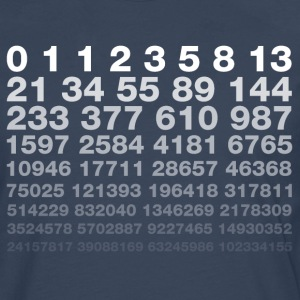 Fibonacci Long sleeve shirts - Men's Premium Longsleeve Shirt