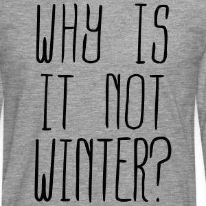 Why is it not Winter (1c) Long sleeve shirts - Men's Premium Longsleeve Shirt