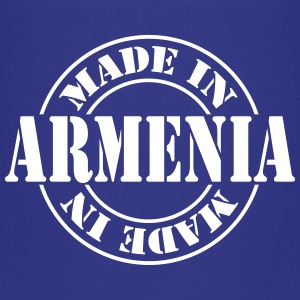 made_in_armenia_m1 Skjorter - Premium T-skjorte for barn