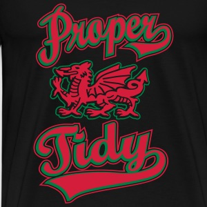 Proper Tidy Welsh Dragon T-Shirts - Men's Premium T-Shirt