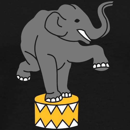 Zirkus Circus Zoo Elefanten Elephants Dressur