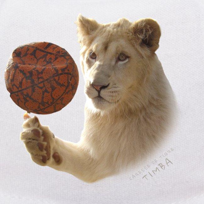 Nounours Timba ballon