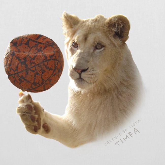 Sac Timba ballon