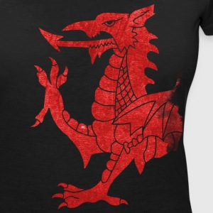 Welsh Dragon Rampant T-Shirts - Women's V-Neck T-Shirt