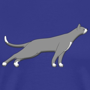 Cat stretches N T-skjorter - Premium T-skjorte for menn