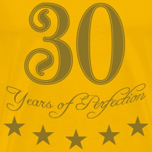30 years perfection perfection star T-Shirts - Men's Premium T-Shirt