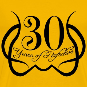 30 Years Perfektion Perfection T-Shirts - Men's Premium T-Shirt