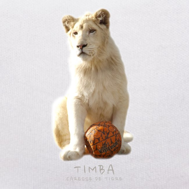Nounours Timba ballon 2