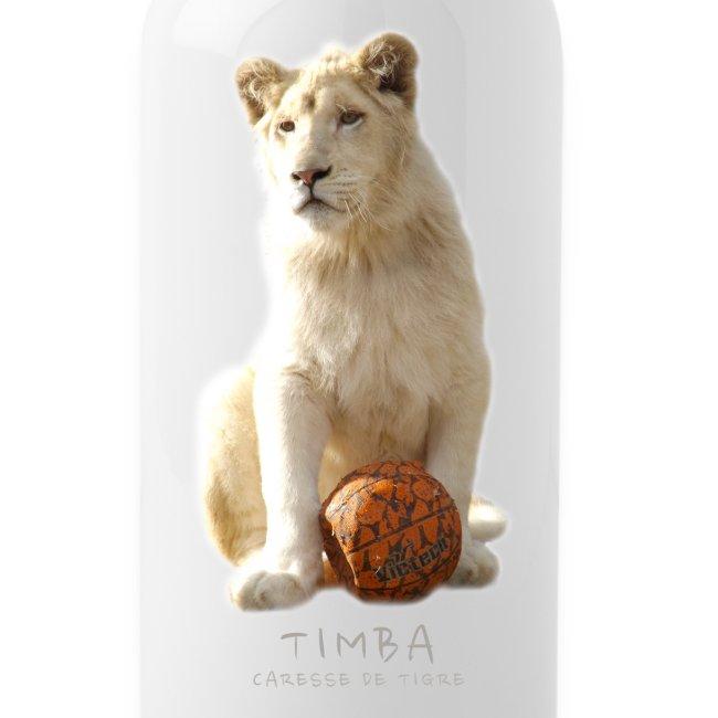 Gourde Timba ballon 2