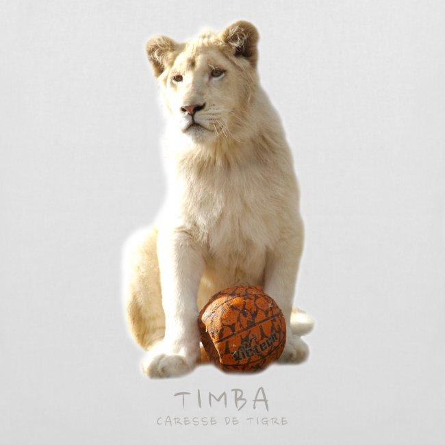 Sac Timba ballon 2