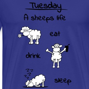 sheeps_life_tuesday_2f T-Shirts - Männer Premium T-Shirt