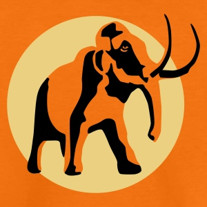 Orange mammut_b_2c Kids' Shirts - Teenage Premium T-Shirt
